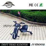 販売のための安い100W電気移動性のスクーター