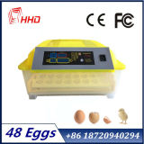 Incubadora automática cheia transparente nova de 48 ovos da galinha dos ovos para a venda quente