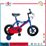 EVA-Gummireifen scherzt Fahrrad-China-Fabrik-Großverkauf-Förderung-Kind-Fahrrad