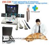 Système Ew-C8V d'échographie-Doppler de couleur d'ordinateur portatif avec la sonde convexe pour le vétérinaire avec le progiciel obstétrique de mesure de spécialité