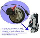 24V 관제사 & 조이스틱 레버를 가진 250W 남겨둔 & 맞은 기어 휠체어 모터
