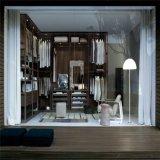 Camminata antica lussuosa di legno di quercia di stile in armadio