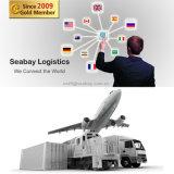 Serviço de transporte profissional de China a Europa