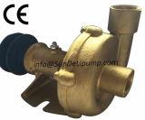 """(PC8000-1 """") bombas de água cruas marinhas de bronze do mar"""