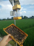 Lámpara de asesino de insectos con energía solar