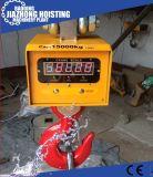 5t 10t Ocs電子デジタルの肉ハングのホッククレーンスケール