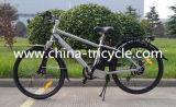 250W 26 Inch Tyre 36V8ah Battery für Electric Bike (SP-EB-11)