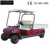 2 Seaters elektrisches Ladung-Auto für Gemeinschaft (LT_A2. H2)