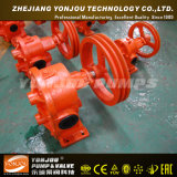 Gaschromatographie Iron Casting Gear Pump für Oil Transfer Application