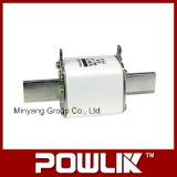 Collegamento termico del fusibile di serie di alta qualità Nt2 (NT2-400A)