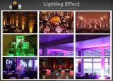 무선 LED 편평한 동위 빛, LED 동위에서 건축된 12LEDs*15W 5 In1 Rgbaw 2.4GHz는 Irc로 할 수 있다