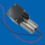 8L/M elektrische Membrane12v Gleichstrom-schwanzlose Schönheits-Druckpumpe des Druck-160kpa