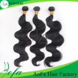 24inch広州の最上質のバージンの波状毛の特別な毛の拡張