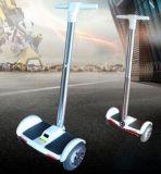 10 Zoll-elektrischer Roller mit Panel Eboards des Griff-Stab-LED