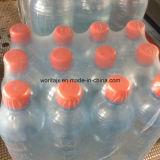 Máquina de embalagem pura da água (WD-250A)