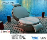 Top Sale Outdoor Patio Rattan Wicker Apple Shape Sun Bed