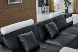 [أو]. [ك]. بينيّة يعيش غرفة جلد أريكة