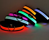 Pet Supply를 위한 다채로운 LED Dog/Pet Collar