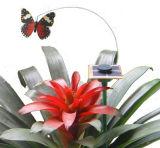 녹색 에너지 제품 지적이는 DIY 태양 장난감 장비 곤충 나비 021