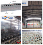 Structure d'acciaio Shed con Automatic Equipment From Qingdao Hapy
