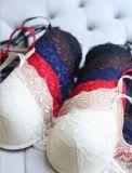 Reggiseno stabilito delle signore della biancheria intima sexy calda di vendita e Panty (FPY319)