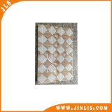 20X30cm 3D Inkjet Ceramic Wall Tiles voor Kitchen en Bathroom