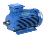 Alta efficienza economizzatrice d'energia Ie3 Ie4 del Ce indipendente d'avvolgimento del nuovo statore di schema di nuovo calcolo del motore del motore asincrono di 3 fasi (YE-160M2-2)