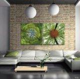 Qualitäts-Hauptdekoration-Kunst-Glas