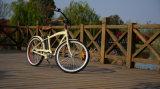 En15184 250W fetter Gummireifen verwendetes klassischer Kreuzer-elektrisches Fahrrad für Verkauf mit Motoren für Fahrräder