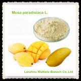 Polvo orgánico natural superventas de Mangiferin
