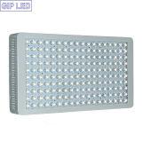 Fachmann 300W 600W 900W 1200W hohe Leistung LED wachsen Licht