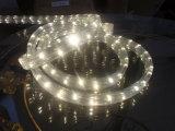 세륨 EMC LVD RoHS 빛 2 년 보장 LED 편평한 밧줄