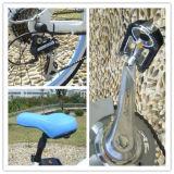 bicicleta elétrica da praia das mulheres de 250W 36V com sem escova