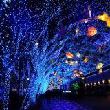 O diodo emissor de luz do Natal ilumina ao ar livre, lasers do jardim