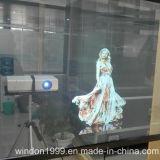 Holográfica película transparente del proyector para Escaparate