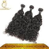 Onde d'eau de trame indienne de cheveux humains de Vierge de la qualité la plus fine (FDX-IWW)