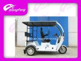 Triciclo Handicapped, triciclo del passeggero del motorino