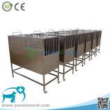 Cage médicale de crabot d'animal familier d'acier inoxydable du meilleur hôpital vétérinaire de qualité