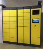 Neues fabelhaftes konzipiertes Paket-Anlieferungs-logistisches Schließfach mit Icloud System