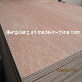 BB / CC Comercial Chapas de madera para muebles, embalaje y construcción