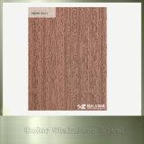 Kundenspezifisches Kupfer überzogene Edelstahl-dekorative Wand-Blätter für Haus-Dekoration