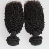 加工されていない8Aペルーのバージンの人間の毛髪のねじれたカール自然なカラー毛