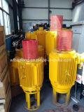 나선식 펌프 판매를 위한 좋은 펌프 37kw 지상 모터 드라이브 헤드 장치