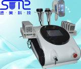 고통 자유로운 Cryoliplysis Lipo Laser 공동현상 RF 체중 감소 기계