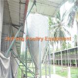 Sistema do silo para o uso da exploração agrícola dos pássaros da galinha