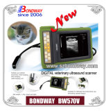 Veterinary Use Bw570V Bondway를 위한 Ecography Machine