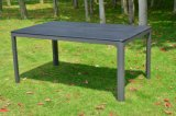 테이블을%s 가진 옥외 가구 공원 가구를 위한 100% 플라스틱 나무