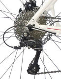 منافس من الوزن الخفيف سبيكة طريق درّاجة