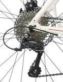 Leichtes Legierungs-Strecke-Fahrrad