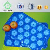Выполненный на заказ пластичный устранимый поднос Alveolos плодоовощ индикации свежей продукции
